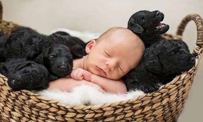 Mulher dá à luz no mesmo dia em que sua cadelinha