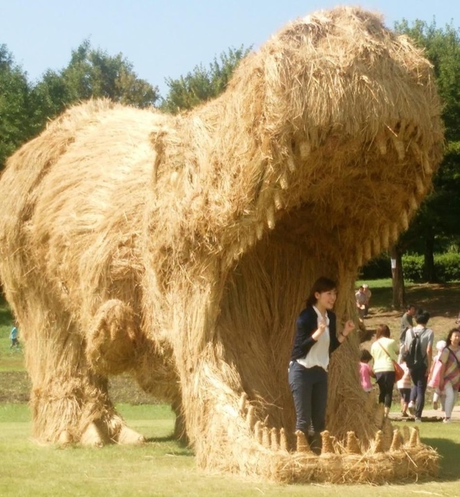Fotos de dinossauros, animais e insetos gigantes feitos de palha