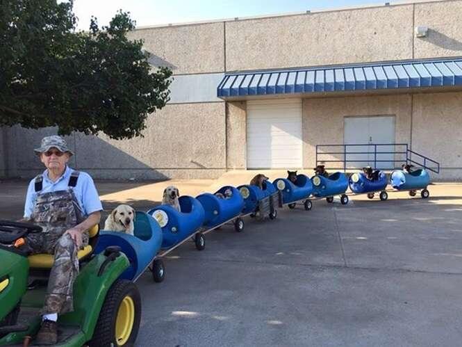 """Aposentado constrói """"trenzinho"""" para passear com seus cães"""