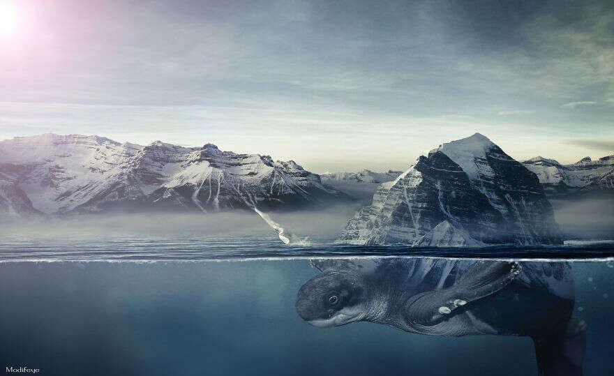Artista combina urbanismo e vida selvagem para gerar imagens fantásticas