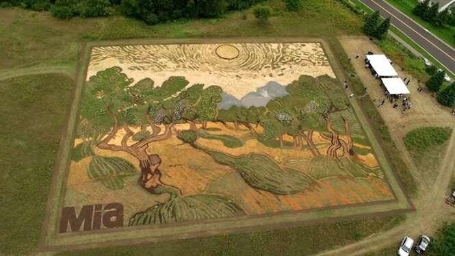 Agricultor usa 4 hectares de terra para recriar quadro de Van Gogh