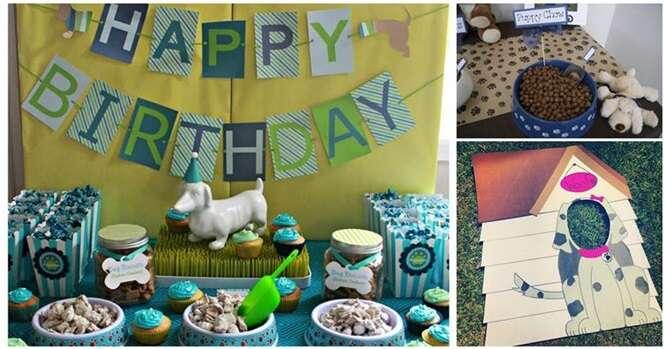 Ideias curiosas para comemorar o aniversário de seu cãozinho