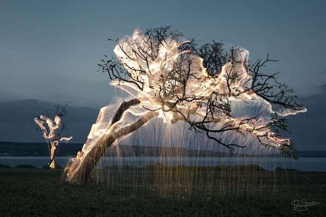 Brasileiro usa fogos de artifício para registrar belas imagens de árvores