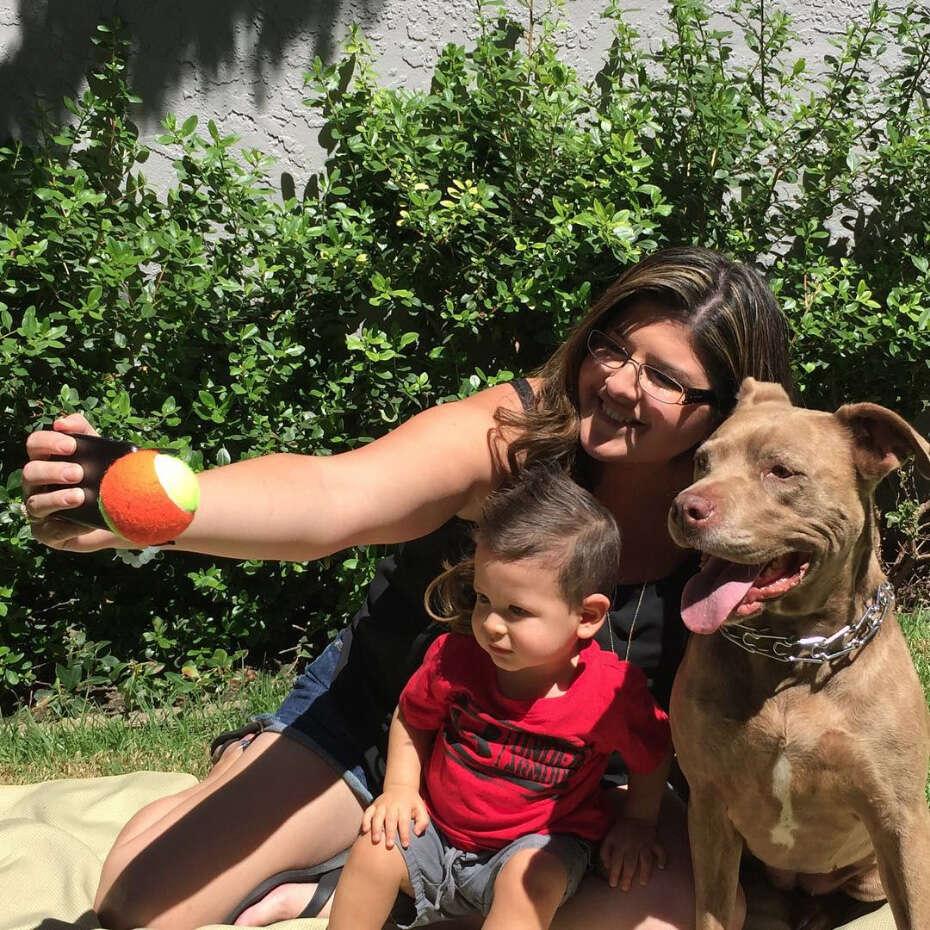 Homem cria produto criativo para que cães tirem selfies perfeito com seus donos