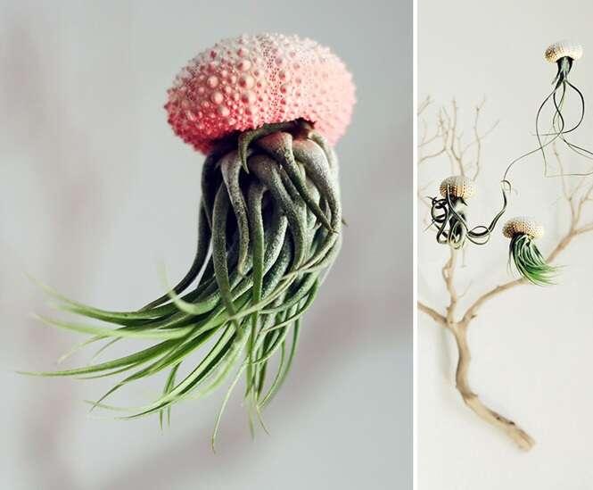 Os mais criativos designs de vasos de plantas para o interior de sua casa