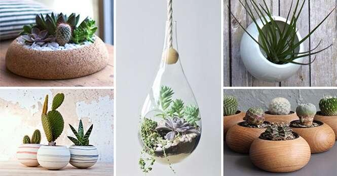 Ideias de presentes para quem ama plantas