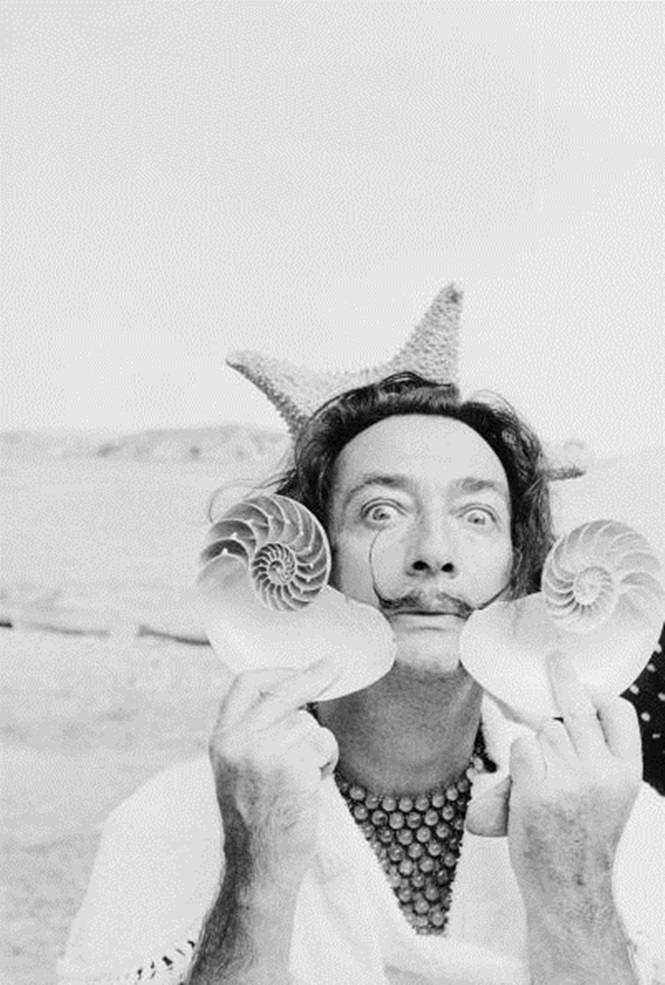 Dali With Shells
