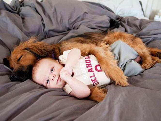 Fotos provando que as crianças precisam ter um animal de estimação