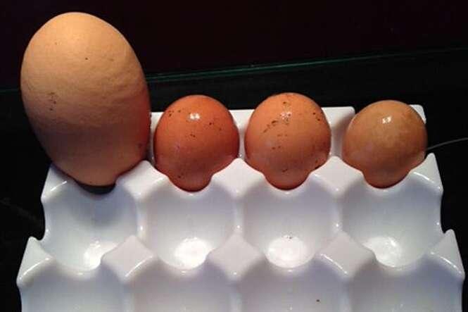 Mulher quebra ovo enorme e tem incrível surpresa ao descobrir o que tinha dentro