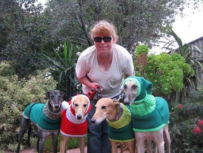 Mulher abandona emprego para tricotar roupas de inverno para cães abandonados