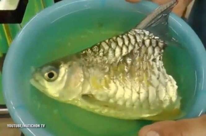 Homem encontra peixe vivo apesar de ter somente metade do corp