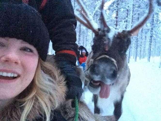 Mulher captura provável melhor selfie deste Natal