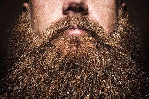 Nova pesquisa revela que ter barba é bom para a saúde