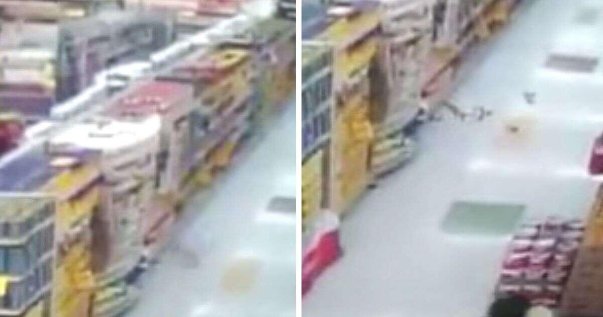 Vídeo assustador mostra momento em que pacotes de alimentos caem de prateleira de supermercado