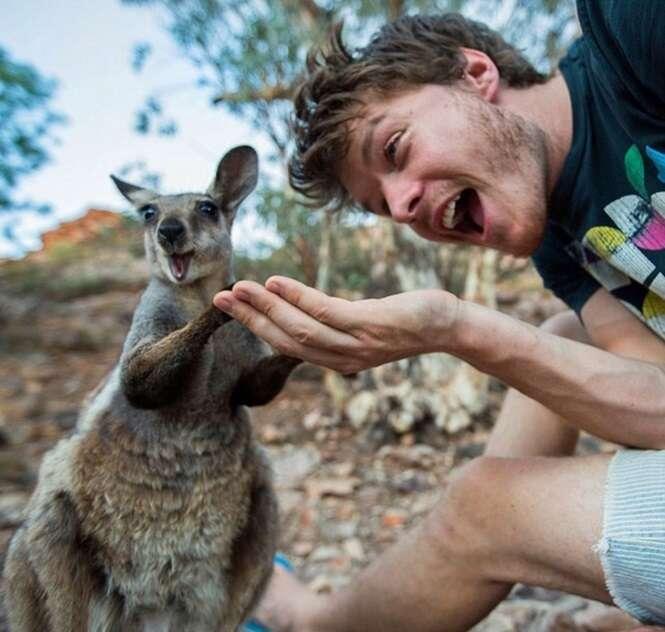 Selfies divertidas de animais com fotógrafo do mundo selvagem