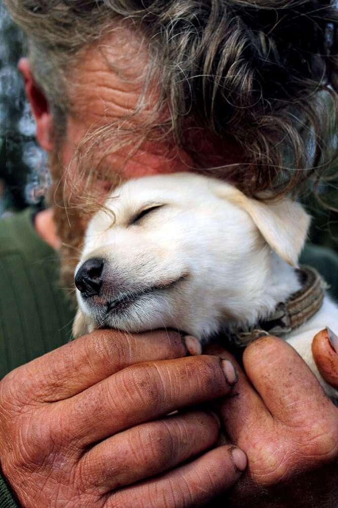 Fotos provando que os cães amam as pessoas independentemente de quanto dinheiro elas têm