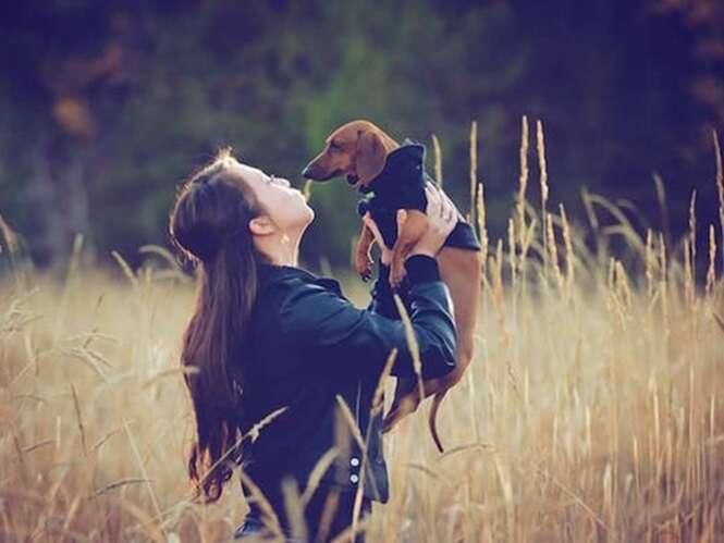 Fotos de cãezinhos que te farão feliz