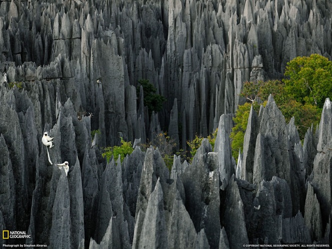 Foto: National Geographic