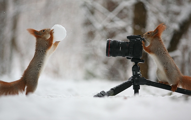 Foto: Vadim Trunov