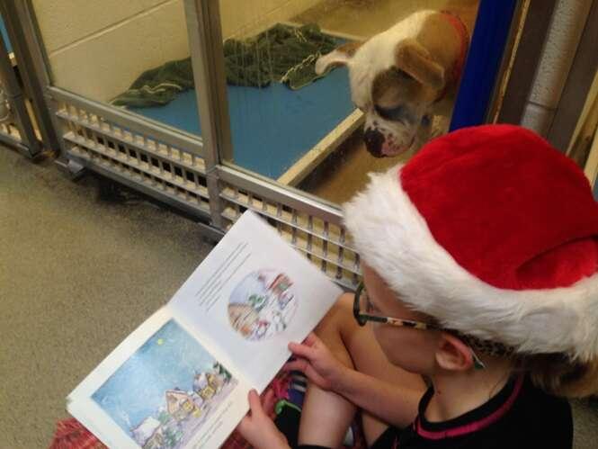 Crianças leem para cães traumatizados em abrigo animal