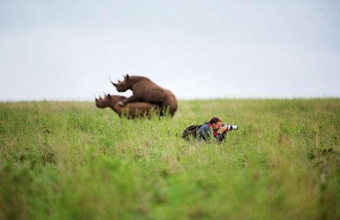 Foto: WWF-UK