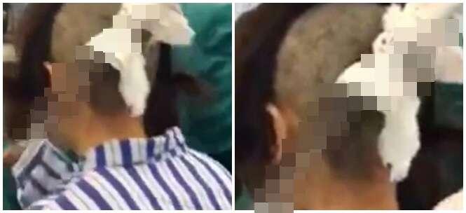 Marido tem cutelo de carne cravado no crânio após esposa descobrir que ele tinha uma amante