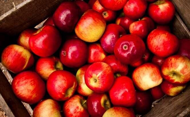 Benefícios saudáveis de se comer maçãs