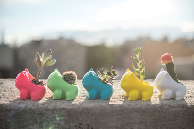 Empresa cria pequenos vasos de plantas inspiurados em personagem de Pokémon
