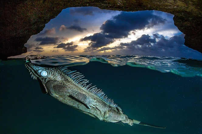 Foto: Lorenzo Mittiga