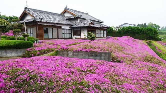 Foto: Yoshiyuki Matsumoto