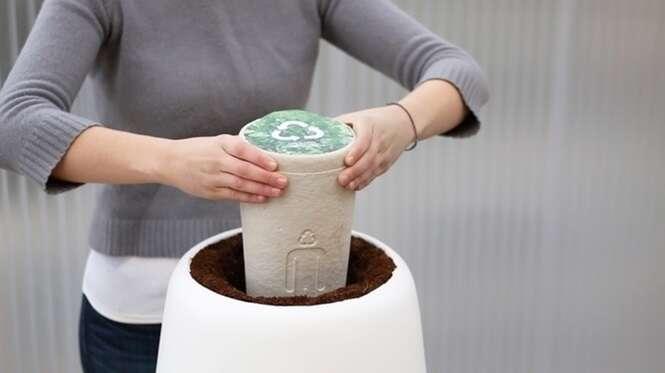 Urna biodegradável vai te transformar em árvore após sua morte