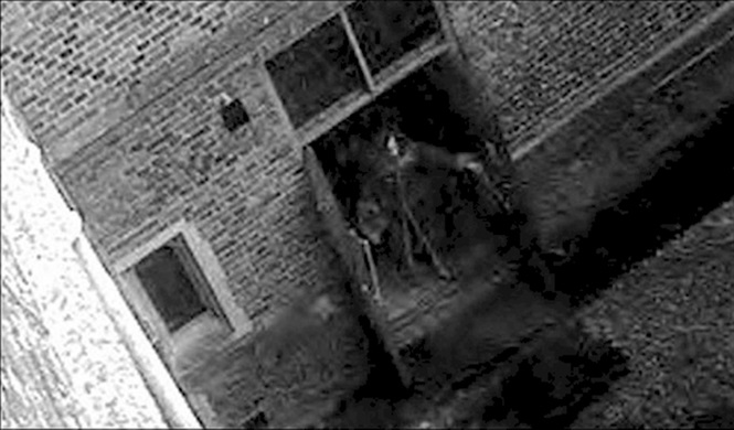 Imagens misteriosas em que pessoas dizem ter visto fantasmas