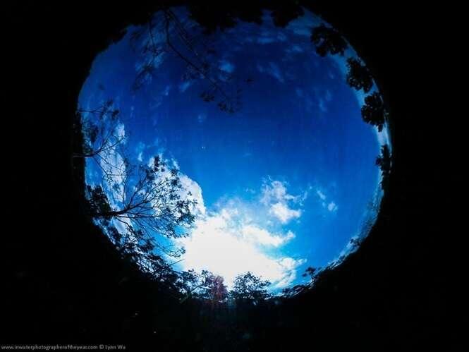 Belas imagens registradas dentro d'água