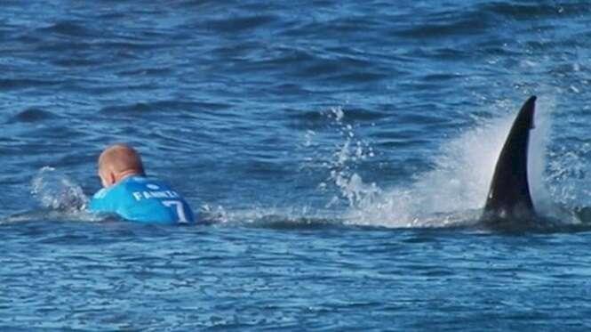 Foto: World Surf League