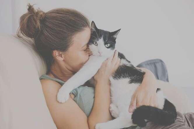 Ter gatos de estimação pode levar a problemas de saúde mental como esquizofrenia