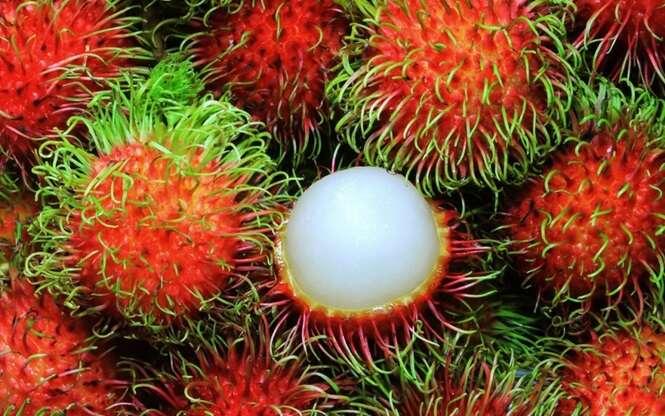 Os frutos mais estranhos que você já viu