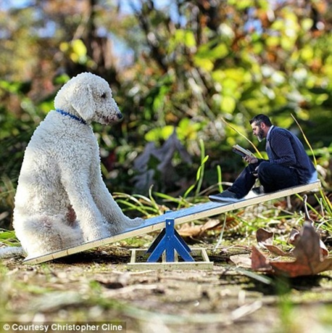 Fotógrafo realiza edição comovente de imagens e faz cão de estimação que salvou sua vida se tornar gigante
