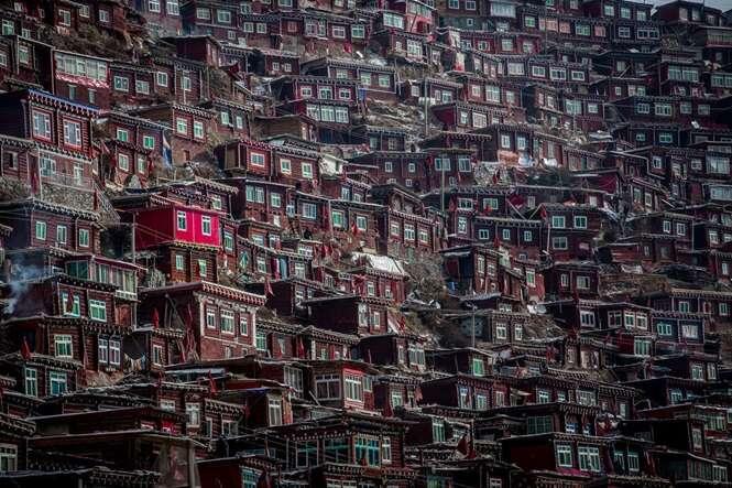 Foto: Wan Shun Luk