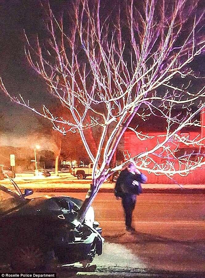 Mulher é presa após ser vista dirigindo com árvore presa no capô de carro