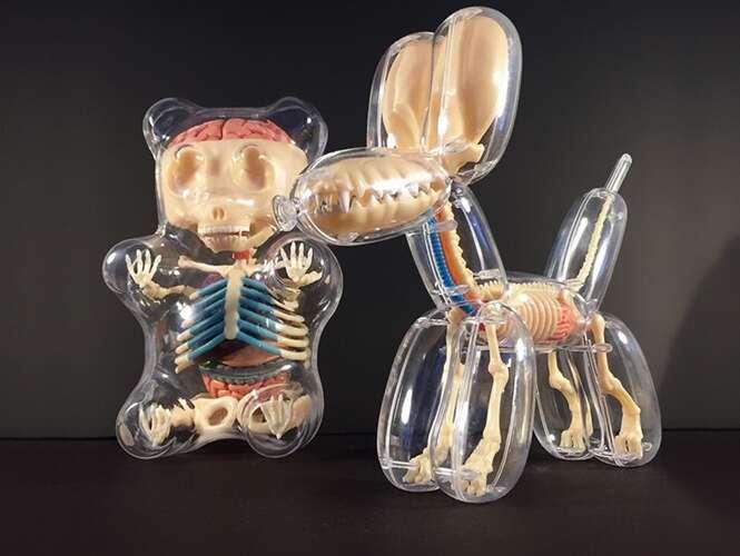 Artista cria esculturas anatômicas de animais