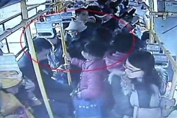 Idoso ataca grávida dentro de ônibus porque mulher não quis lhe ceder assento preferencial