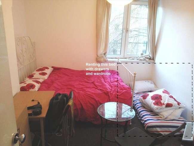 Anúncio tenta alugar colchão em quarto