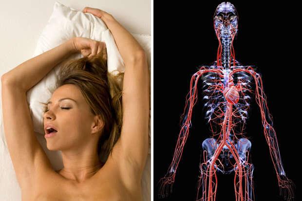 Descubra o que acontece com seu corpo durante o ápice do prazer