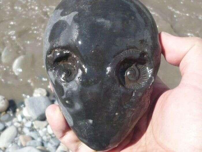 Pedra com formato de rosto faz sucesso na internet