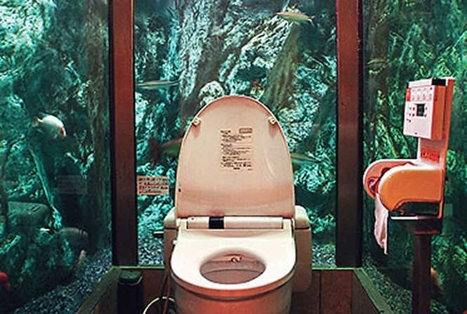 Banheiros estranhos pelo mundo