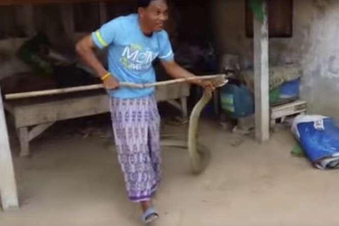 Homem captura cobra gigante de 5 metros que estava debaixo de sua cama