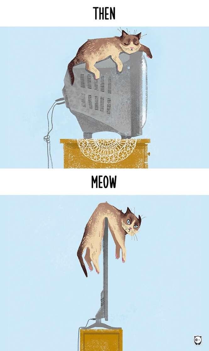 Imagens mostrando como a tecnologia mudou a vida dos gatos