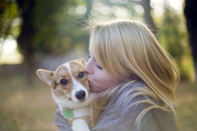 Estudo conclui que cães odeiam receber abraços