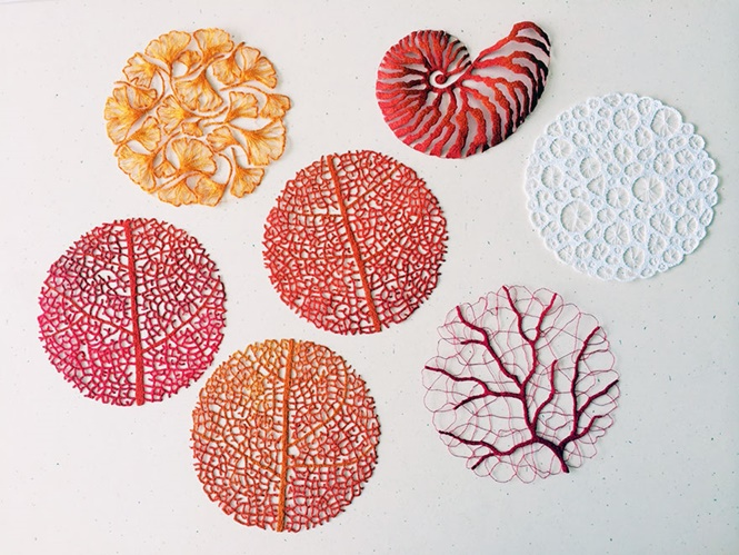 Foto: Meredith Woolnough