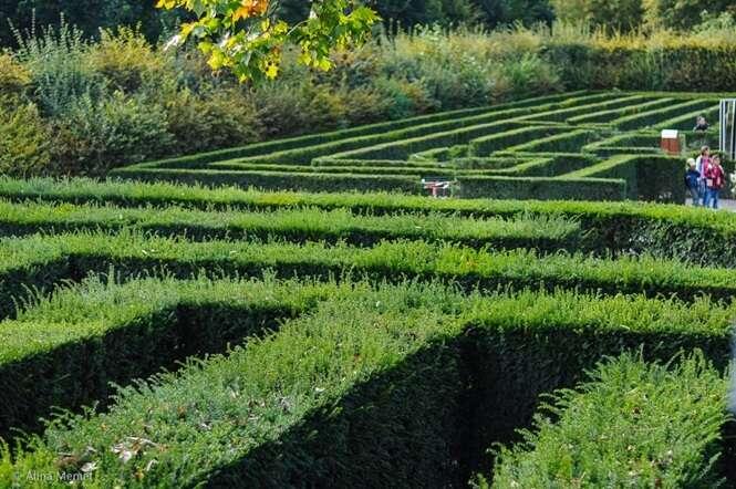 Incríveis jardins em formato de labirinto